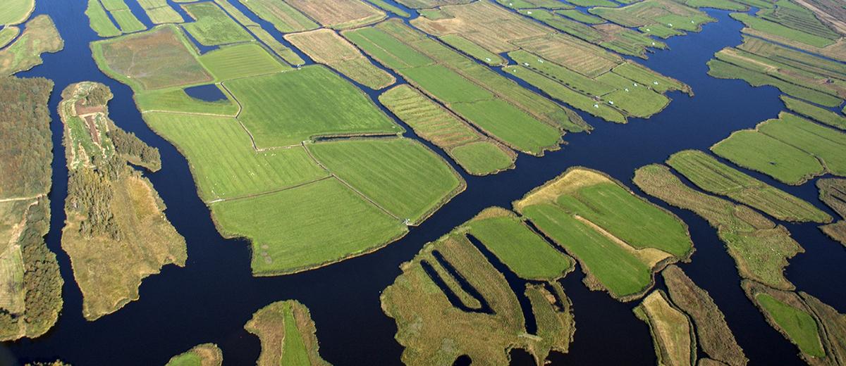 SUP Route Ilperveld, Landsmeer (16.8 km) - Happy Supper