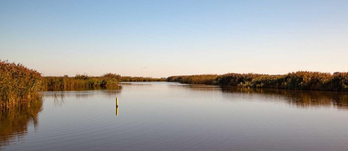 SUP Route Ilperveld en Varkensland, Landsmeer (20 km) - Happy Supper