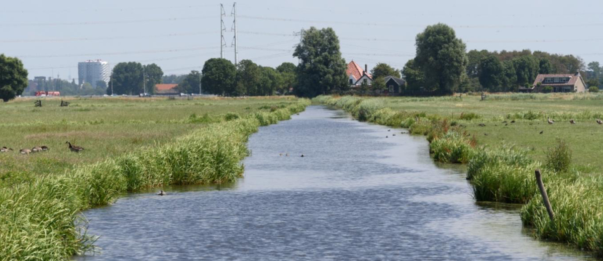 SUP Route Spaarnwoude, Velsen-Zuid (3,8 km) - Happy Supper