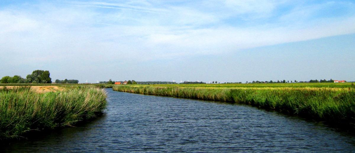 SUP Route Steenbergsche Vliet - De Heen (14 km) - Happy Supper